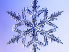 Snowflakes are ice-crystals, a particular form of water ice .Ice-crystals are appear as clear glass but more fragile. Pictures Of Christ, Snow Pictures, Snowflake Pictures, Ice Crystals, Things Under A Microscope, Snow And Ice, Winter Wonder, Patterns In Nature, Ciel