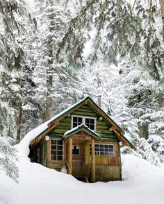 """pieceofwilderness: """"Cute little green cabin 😍 Tag a friend you'd take here! 🌲 By @flockhart_photography . Follow our friends @cabinsdaily . #travel #travelabroad #travellife #cabins #travelgram..."""