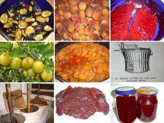 Vaření povidel, recepty a tipy. • Domácí jablečná a hrušková povidla.• Jejich královské veličenstvo švestková povidla. •Povidla z mirabelek, třešní a višní.
