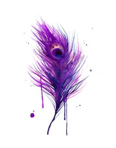 Watercolor Peacock Feather  The Purple by JessicaIllustration, $22.00