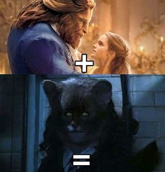 I'm so glad I wasn't the only one that thought of this | Beauty and the Beast/Harry Potter