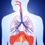 Postul de miercuri si vineri | La Taifas Natural Health Remedies, Jaba, Character, Lettering