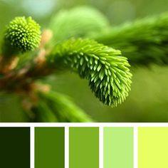 Color Palette No. Green Colour Palette, Green Colors, World Of Color, Color Of Life, Colour Schemes, Color Combos, Pantone Verde, Palette Verte, Color Balance
