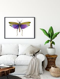 Poster of watercolor grasshopper by Martha Iserman by Big Red Sharks Studios Watercolor Red, Sharks, Studios, Illustration Art, Tapestry, Purple, Trending Outfits, Big, Handmade Gifts