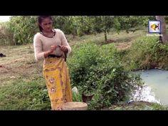 Khmer cast net fishing - Net Fishing at kampong cham Province - Cambodia...