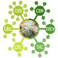 The cannabinoid guide is to help you understand the main cannabinoids, identify their effects and health benefits. If you notice, not all cannabinoids are