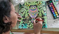 jardim secreto livro de colorir pdf - Pesquisa Google