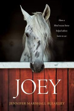 The interaction between human and animal can lead to tremendous healing, and this has been seen with a variety of animals, including #horses. (A review of Joey by Jennifer Marshall Bleakley.) #Christian #bookreview