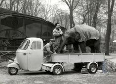 Piaggio ape & elephant