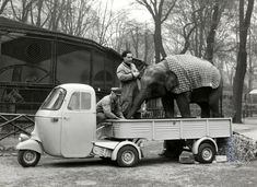 Piaggio Ape with Elephant