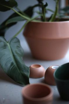 Rimm flowerpot in camel. Photo credit: @studioxmariannexviktor.