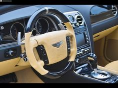 Fotos del Mansory Bentley Continental GT & GTC - 16 / 16