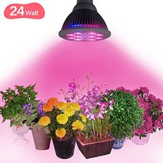 Juzihao 24W LED Plant Grow Lights 3 Blue9 Red E27 Growing Bulbs for Indoor Garden Greenhouse Hydroponic Lamps >>> For more information, visit image link.