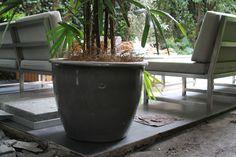 MACETA GRIS TRINITATE  #pot #garden