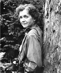 """""""One way to open your eyes is to ask yourself: What if I had never seen this before? What if I knew I would never see it again?"""" - Rachel Carson"""