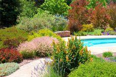2014 BBY - Anne's garden