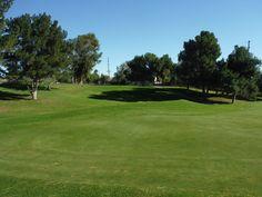 The Golf Coarse