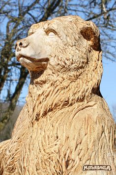 Bär, Material: Fichte Höhe, ca. 460 kg - Modern Chainsaw Wood Carving, Wood Carving Art, Wood Sculpture, Sculptures, Tree Felling, Tree Carving, Wooden Animals, Hand Art, Cool Things To Make