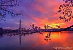 Sunrise this morning at Washington DC... photo from @tpfmariah9999 by spannpix
