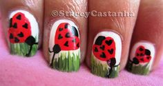Cute Heart Shaped Ladybird :)