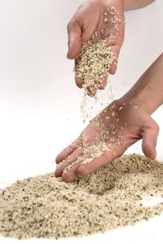 5 Reasons to Eat Hemp Seeds and How to Use Them