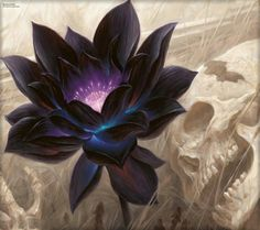 Black lotus flower