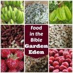 Food+in+the+Bible+1.+–+Garden+Eden