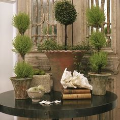 weathered pots and topiaries