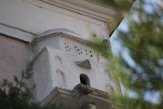 İzmir - Kemeraltı - Kemeraltı Camii [Kaynak: Erol Şaşmaz]