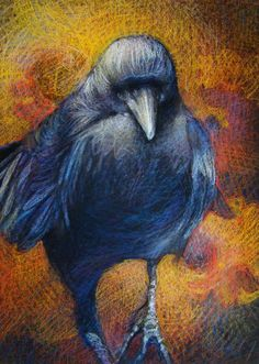 ARTFINDER: Raven in Approaching by Tonja Sell - Pastel on Mi-Teintes Touch Paper This drawing is available as unframed.