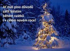 Výsledek obrázku pro vánoční přání Merry Christmas Wishes Quotes, Christmas Quotes For Friends, Xmas Quotes, Merry Christmas Quotes, Wishes For Friends, Happy New Year Wishes, Merry Christmas And Happy New Year, Christmas 2019, Christmas Lights