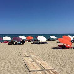 Le Poulpe#Leucate Plage#my coulours parasols#sand#beach#summer