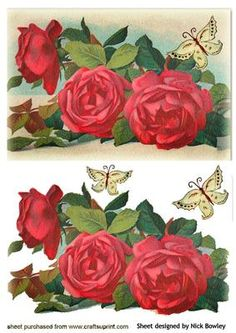 BEAUTIFUL VINTAGE RED ROSES WITH BUTTERFLIES on Craftsuprint - Add To Basket!