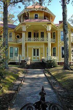 Yellow Southern Beauty