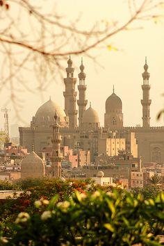 El Cairo, Egipto  (foto:Khalid Mohy)