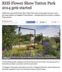 Express Website, Deborah Stone article