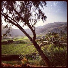 Lebanon, West Bekaa view