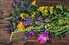 toniki kwiatowe