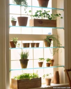 Window shelves by lorid54