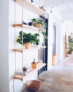 Make Your Own Hanging Rope Shelf· Want to administer your home a natural, craftsman feel? Hanging rope shelves square measure an excellent answer. Hanging Bookshelves, Diy Hanging Shelves, Plant Shelves, Suspended Shelves, Wall Shelves, Book Shelves, Diy Shelving, Shelves With Plants, Storage Shelves