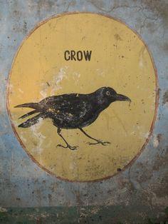 Crow (Chail, India) (by. - Curiosity Contained Crow Art, Bird Art, Illustrations, Illustration Art, Street Art, Blackbird Singing, Crow's Nest, Jackdaw, Crows Ravens