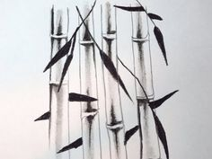 How To Draw Bamboo Tree Pencil Sketch, Tree Drawings Pencil, Tree Sketches, Art Drawings, Drawing Art, Bamboo Drawing, Bamboo Art, Painted Shed, Drawing Projects