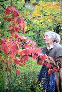 We love Tasha Tudor's books.  What a wonderful woman filled with ideas on how to live a simple life.