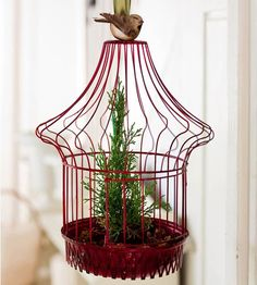 Suspended Miniature Tree Decoration ~~ Hung from a chandelier or the ceiling, a petite juniper appears to float in midair. Use a vintage birdcage or wire basket to hang the tree in a small container. Cover the bottom with small pinecones or nuts, glue a faux bird to the top, and use a wide ribbon to hang the tree decoration at an appropriate height.