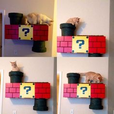 Super Mario Cat Shelf (10 pics) I wonder... will Mr. D let me try to make this since he is such a video game super nerd? Damn.. I wish I still lived near my dad or buddy larry.