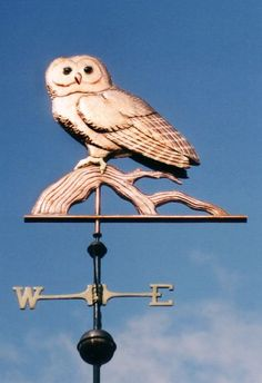 Spotted Owl Weather Vane by West Coast Weather Vanes.  we have used gold leaf on this weathervane to create the distinctive markings for which this bird is known. We even did a version of the Spotted Owl weathervane for one customer where the owl was clutching a cluster of grapes in its talons.