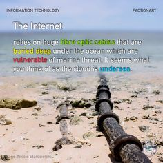 The Internet relies on huge fibre optic cables that are buried deep under the ocean which are vulnerable of marine threat. It seems what you think of as the cloud is undersea. What You Think, Did You Know, Under The Ocean, Fiber Optic Cable, Information Technology, Facebook Sign Up, Vulnerability, Thinking Of You, Internet