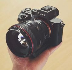 Sony ii with Can Sony ii with Canon (With Metabones adapter) Photo by Gerard Wood Nikon Lens, Sony Camera, Camera Gear, Dslr Cameras, Canon Dslr, Best Camera For Photography, Photography Camera, Photography Tips, Photoshop Photography
