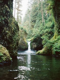 Punch Bowl Falls | Eagle Creek Trail | Oregon