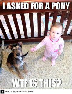 Babies nowadays